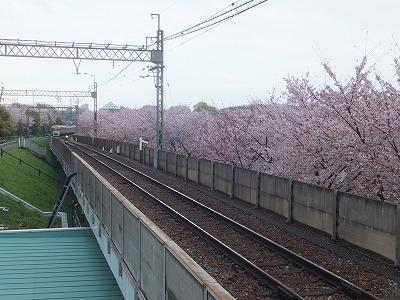 takaido-street38.jpg