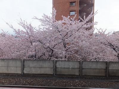 takaido-street39.jpg
