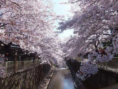 takaido-street41.jpg