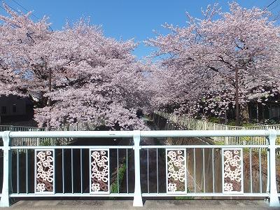 takaido-street42.jpg