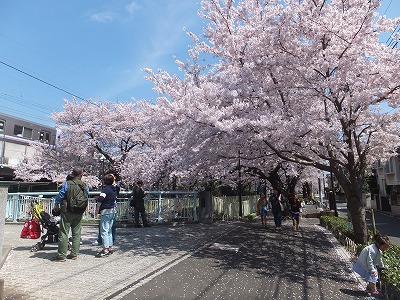takaido-street43.jpg