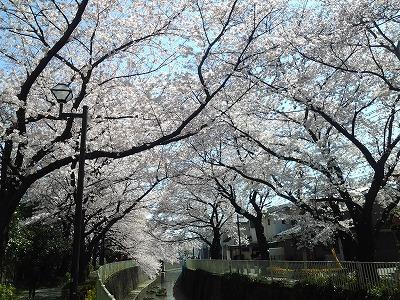 takaido-street47.jpg