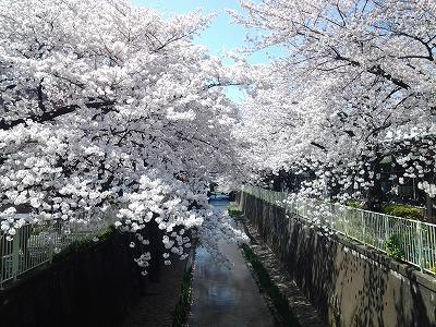 takaido-street48.jpg