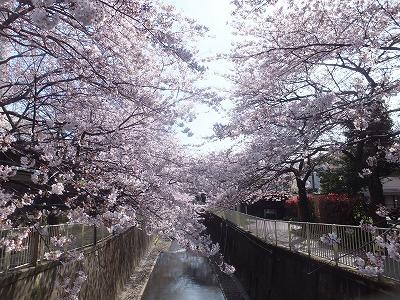 takaido-street49.jpg