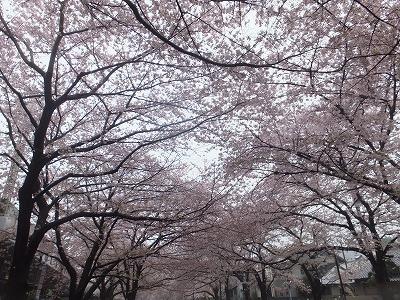 takaido-street52.jpg