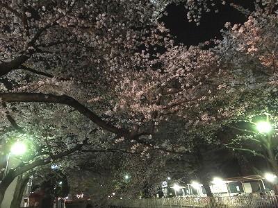 takaido-street56.jpg