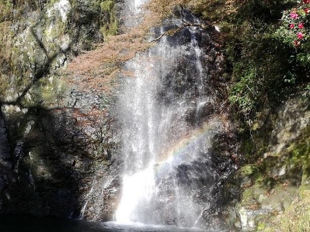 箕面の滝20161126 (6)