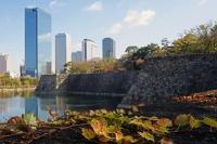 BL161208大阪城石垣3IMG_0605
