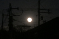 BL170112満月IMG_1151