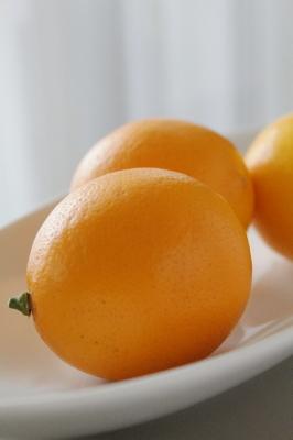 レモンS0001