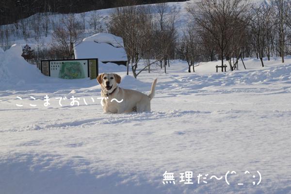 eriyuki2.jpg