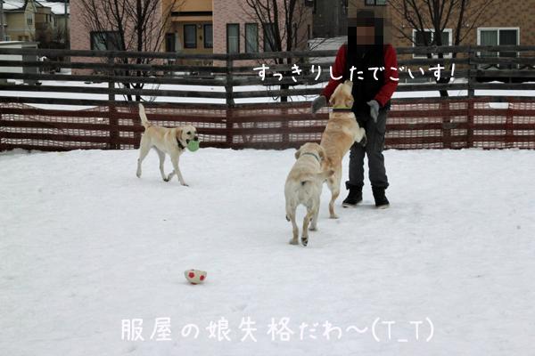 huku3_20161220220754cc7.jpg