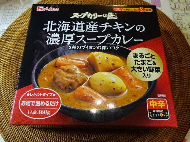 スープカレー (1)