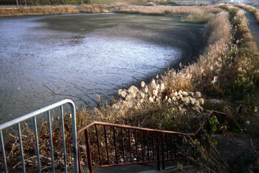 干上がった池の畔で