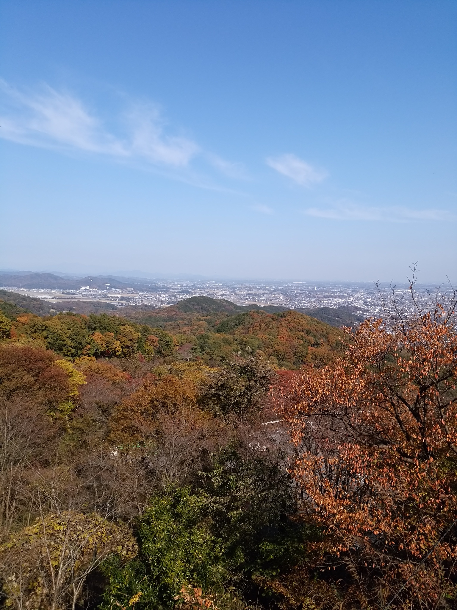 太平山から