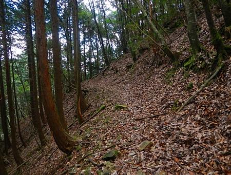 201612_Saruyama_39.jpg