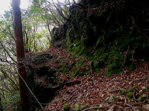 201612_Saruyama_42.jpg