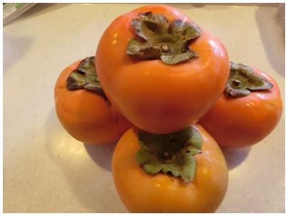 飯山の富有柿