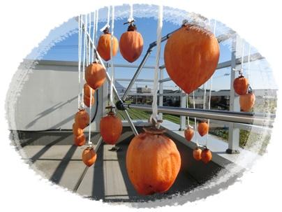 12月19日の干し柿