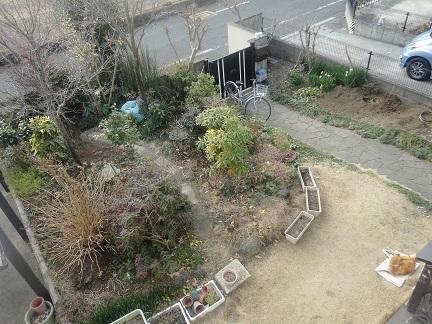 庭でのソマ