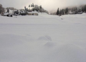 雪国の陽光