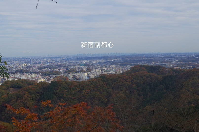 IMGP6927_1128g.jpg