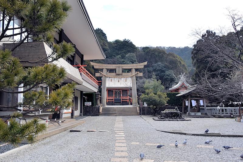 hayasu102.jpg