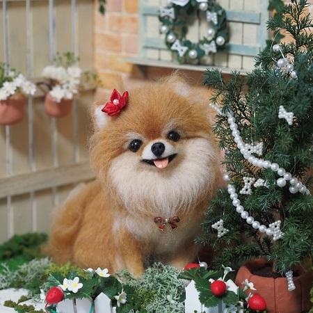 ブログ1114クリスマスポメ