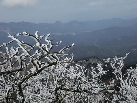 11 頂上の霧氷と鎧兜岳