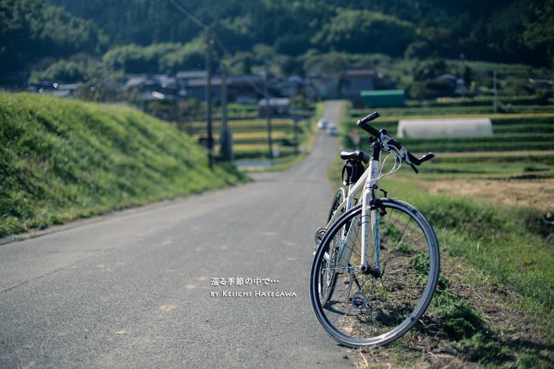 _G2A5654-2.jpg