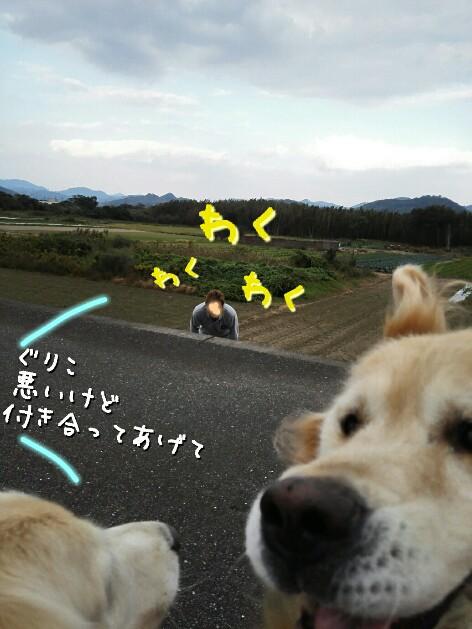 20161109230236914.jpg
