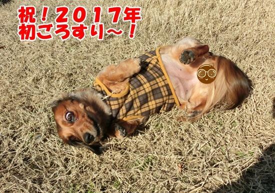 0101_20170101154307662.jpg