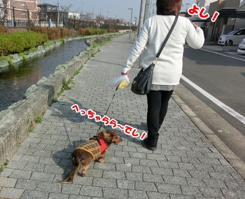 0411_2017010421351733f.jpg