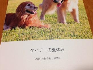 IMG_2044_20161030191501b2f.jpg