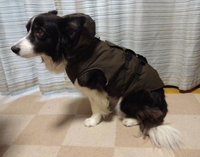 ヴィッキーの防寒服3