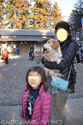 hatsumoude201701.jpg