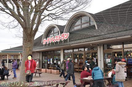 hitachikaihin201621.jpg