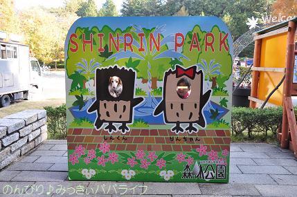 shinrinkoen20161102.jpg
