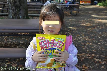shinrinkoen20161125.jpg