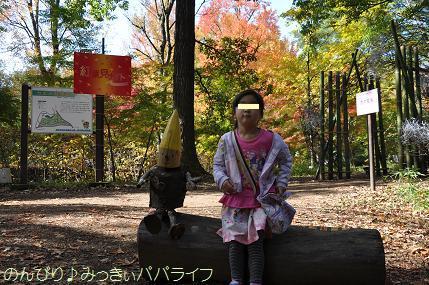 shinrinkoen20161135.jpg