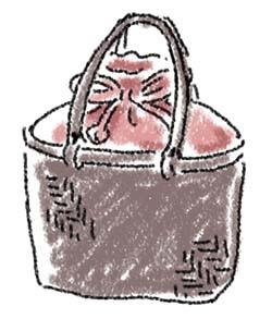 網代編み巾着付き