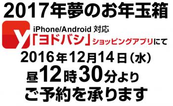 SnapCrab_NoName_2016-12-13_23-38-44_No-00.png