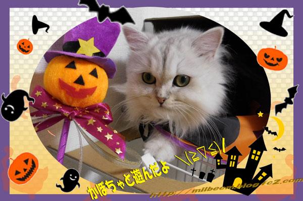 Halloween008.jpg