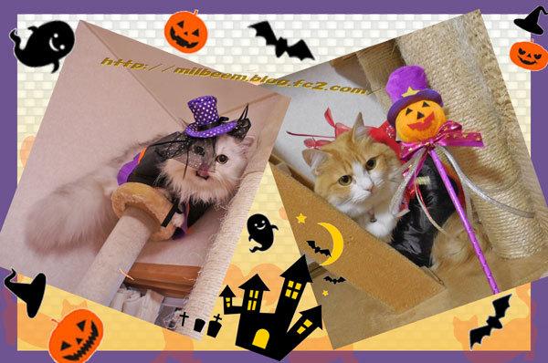 HalloweenKasou004.jpg