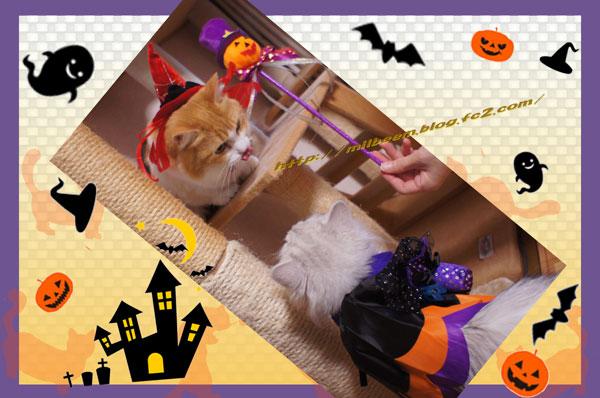 HalloweenKasou005.jpg