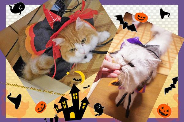 HalloweenKasou006.jpg