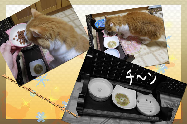 nanakusa007.jpg