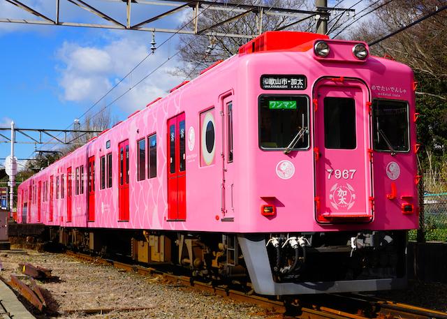 170212 Nankai kada medetai-train
