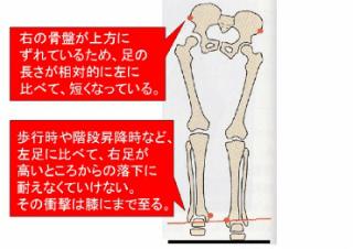 左足が長い・・。