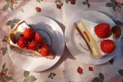 2017 2月お誕生日のいちごケーキ
